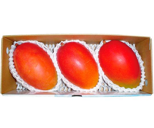 〈沖縄〉完熟マンゴー