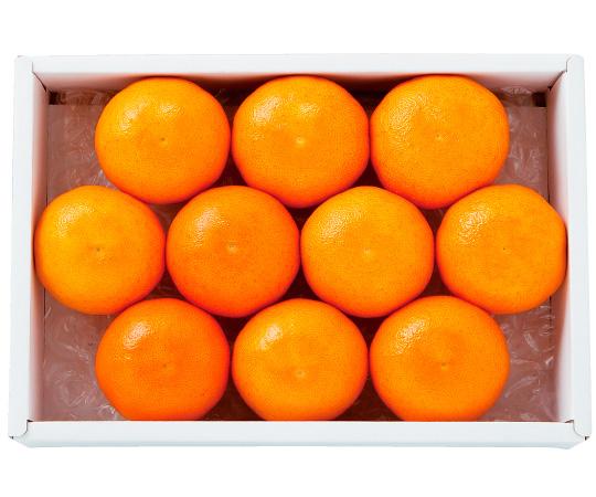 【直送】〈大分・杵築〉美娘(みこ)オレンジ